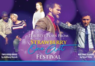 Image for Best Plays from The Strawberry One-Act Festival