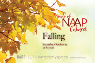 Image for Friends of NAAP