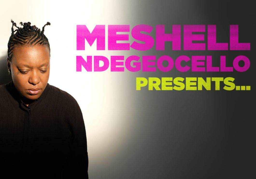 Meshell 21 Search Web B